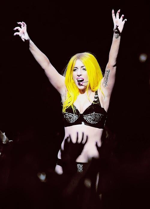 Keep Calm and Paws Up Lady Gaga