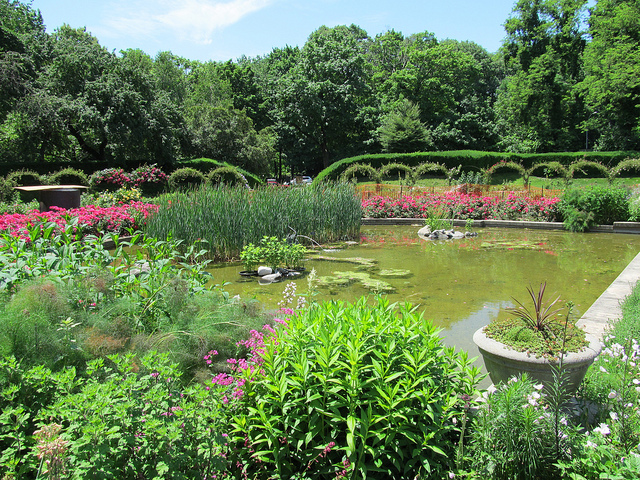 10 free things to do in nyc 9 news facts other - Brooklyn botanical garden admission ...