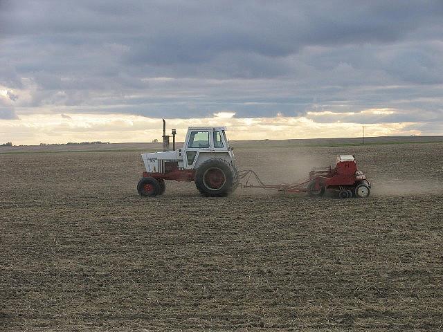 Hemp soil
